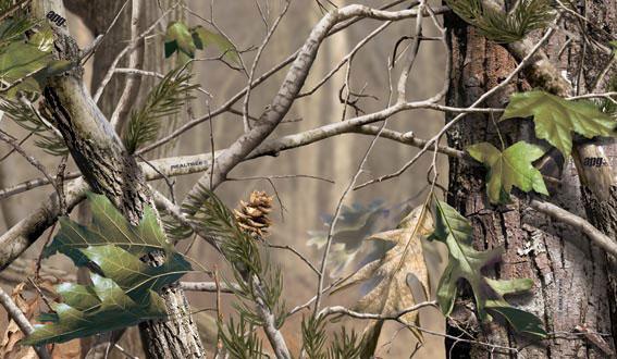 Deer Blinds Stands Realtree Camo Dewalt Bow Gun Hunting